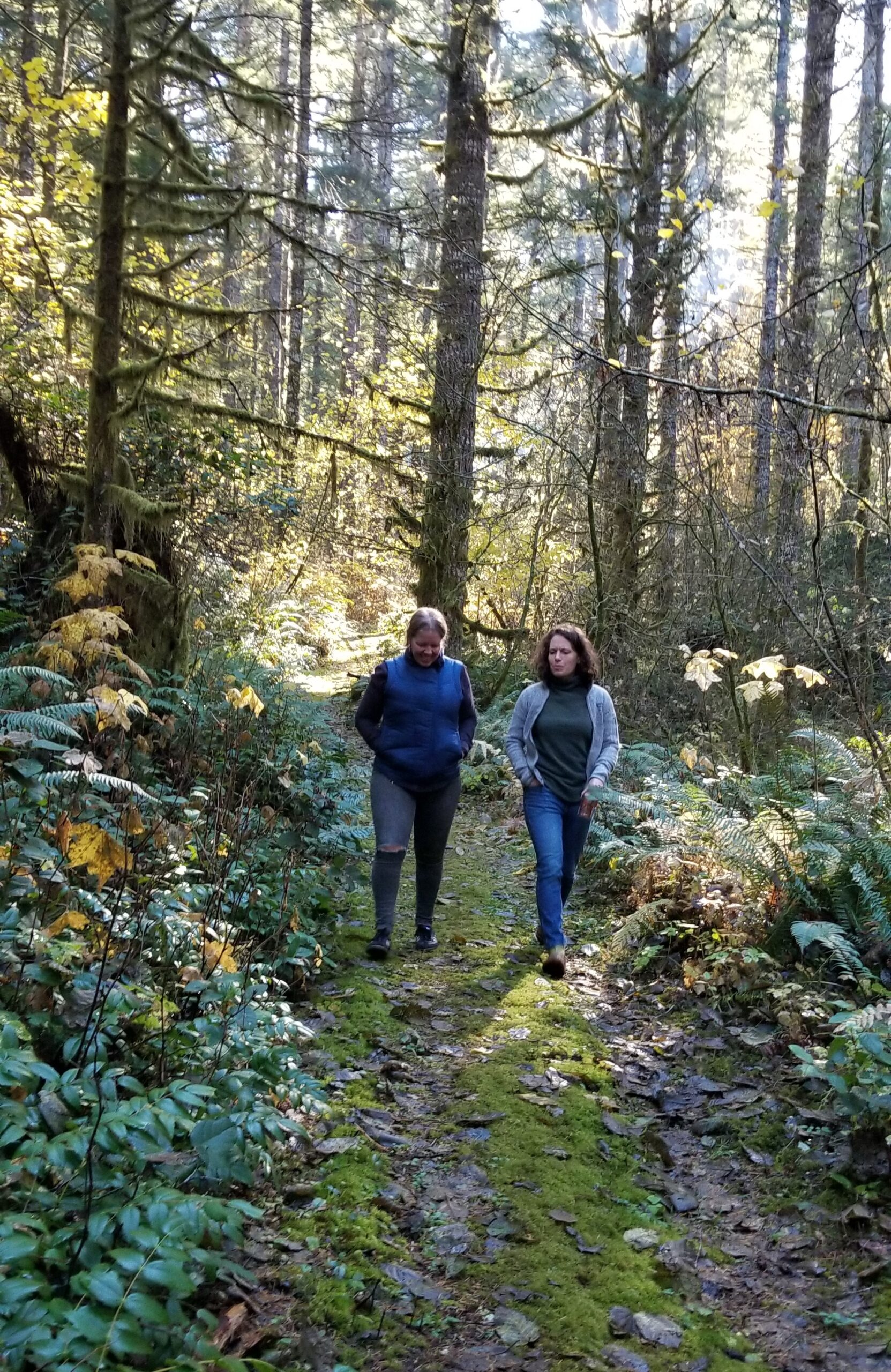 BLA board members take a walk in the woods.